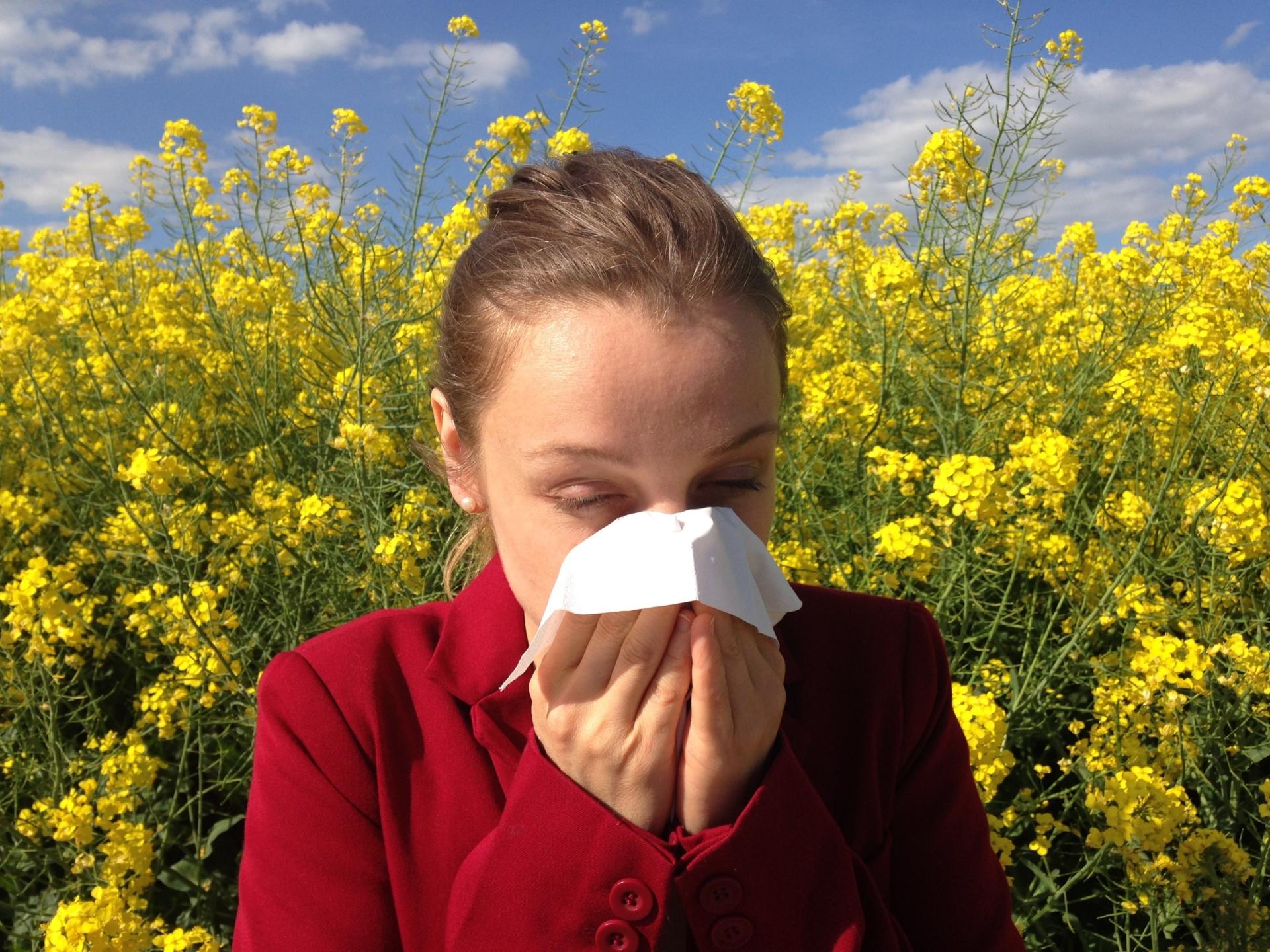 allergy-1738191></noscript><img class=