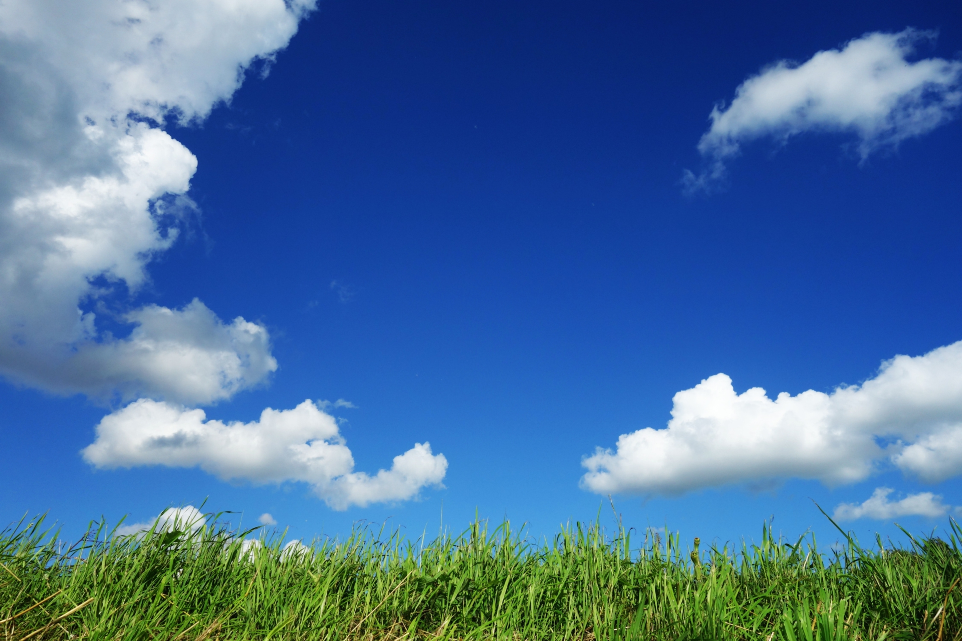 blue-sky-bright-clouds-125457>